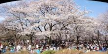 04-04-Tokyo150
